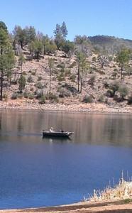 boating 3 278x448