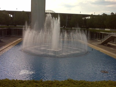 SUNY at Albany, My College
